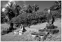 Japanese cemetery in Hana. Maui, Hawaii, USA (black and white)