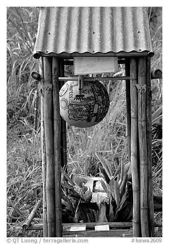 Self-serve flower and fruit stand. Maui, Hawaii, USA (black and white)