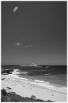 Makapuu Beach with paraglider above. Oahu island, Hawaii, USA (black and white)