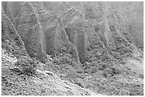 Flutted mountains near Pali highway,. Oahu island, Hawaii, USA (black and white)