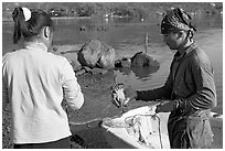 Fisherman giving a freshly caught crab to his wife, Kaneohe Bay, morning. Oahu island, Hawaii, USA ( black and white)
