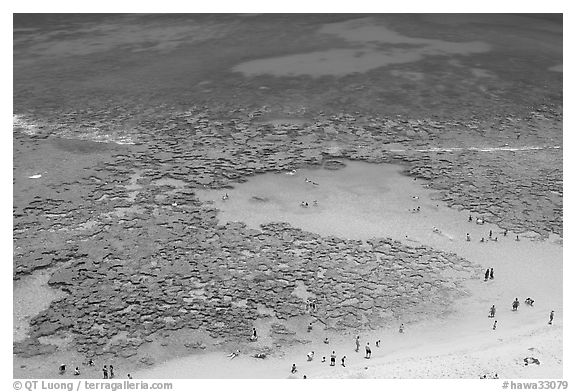 People in the water in the reefs of Hanauma Bay. Oahu island, Hawaii, USA (black and white)