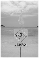 Sign warning against jellyfish,  Hanauma Bay. Oahu island, Hawaii, USA (black and white)