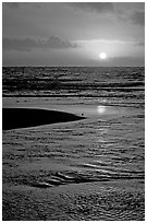 Sun and bird, mouth of the Wailua River. Kauai island, Hawaii, USA (black and white)