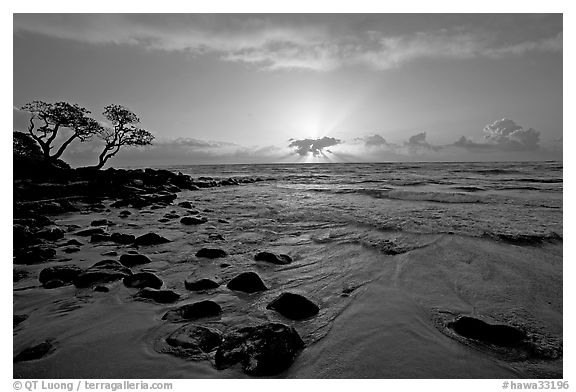 Windblown trees, boulders, and clouds, Lydgate Park, sunrise. Kauai island, Hawaii, USA (black and white)