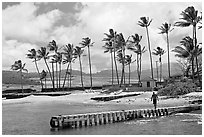 Pier, Kukuila harbor. Kauai island, Hawaii, USA (black and white)