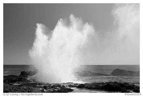 Spouting horn blowhole. Kauai island, Hawaii, USA (black and white)