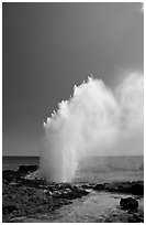 Stream of water shooting up from blowhole. Kauai island, Hawaii, USA ( black and white)