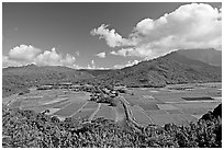 Hanalei Valley from Hanalei lookout. Kauai island, Hawaii, USA ( black and white)