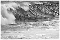 Blue wave. North shore, Kauai island, Hawaii, USA (black and white)