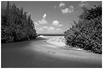 Stream and beach. North shore, Kauai island, Hawaii, USA (black and white)