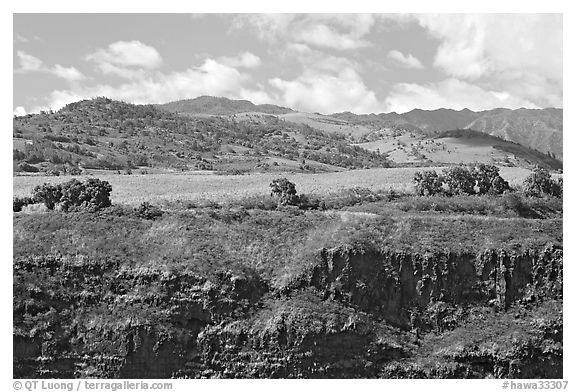 Cliff, field, and hills, Hanapepe overlook. Kauai island, Hawaii, USA (black and white)
