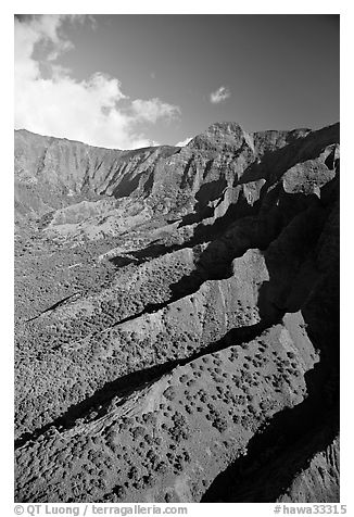 Aerial view of a valley, Na Pali Coast. Kauai island, Hawaii, USA (black and white)