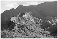 Aerial view of slopes of Mt Waialeale. Kauai island, Hawaii, USA (black and white)