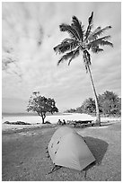 Tent and palm trees, Haena beach park. North shore, Kauai island, Hawaii, USA (black and white)