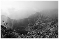 Kalalau Valley and mist, late afternoon. Kauai island, Hawaii, USA ( black and white)