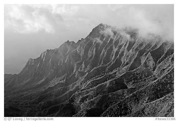 Lush Hills above Kalalau Valley, seen from the Pihea Trail, late afternoon. Kauai island, Hawaii, USA (black and white)