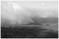 Alakai Swamp and clouds,  sunset. Kauai island, Hawaii, USA (black and white)