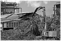 Sugar cane mill. Kauai island, Hawaii, USA (black and white)