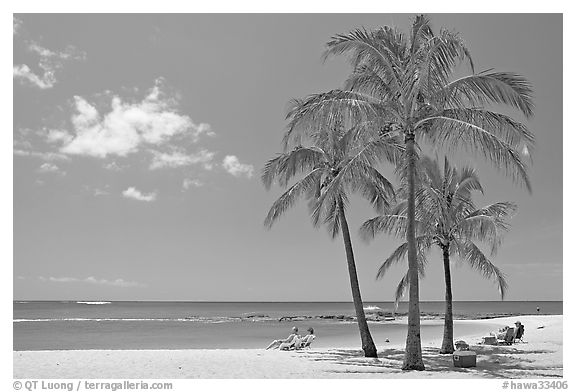 Couple on beach chair, and coconut trees,  Salt Pond Beach, mid-day. Kauai island, Hawaii, USA (black and white)