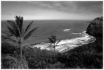 Polulu Beach seen from Polulu Valley overlook. Big Island, Hawaii, USA ( black and white)