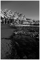 Beach of basalt black sand  at Punaluu. Big Island, Hawaii, USA ( black and white)