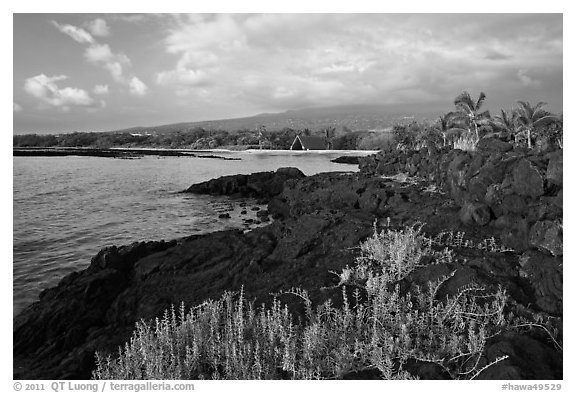 Lava shoreline, Kaloko-Honokohau National Historical Park. Hawaii, USA (black and white)