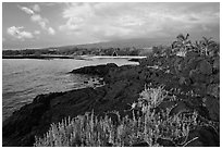 Lava shoreline, Kaloko-Honokohau National Historical Park. Big Island, Hawaii, USA ( black and white)