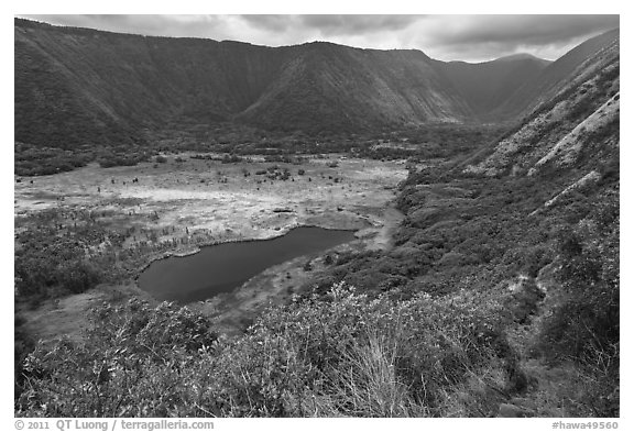 Waipio Valley. Big Island, Hawaii, USA (black and white)