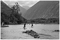 Men paddleboarding on river, Waipio Valley. Big Island, Hawaii, USA (black and white)