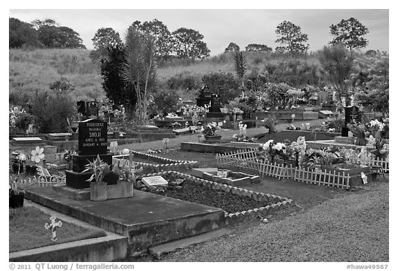Hilo cemetery. Big Island, Hawaii, USA (black and white)
