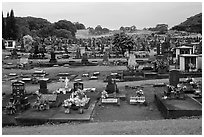 Japanese graves, Hilo. Big Island, Hawaii, USA (black and white)