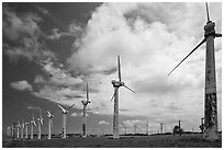 Old Kamoa wind farm, South Point. Big Island, Hawaii, USA (black and white)