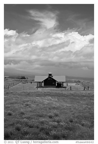 Rural building with bright red roof in ranchland. Big Island, Hawaii, USA (black and white)