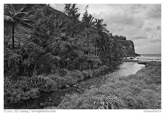 Honokohau creek and coast. Maui, Hawaii, USA (black and white)