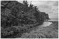 Honokohau creek and coast. Maui, Hawaii, USA ( black and white)