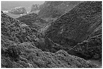 Verdant eroded valley. Maui, Hawaii, USA ( black and white)