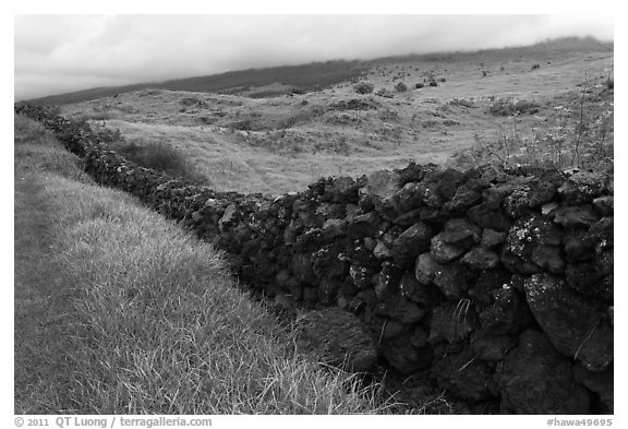 Long lava rock wall and pastures. Maui, Hawaii, USA