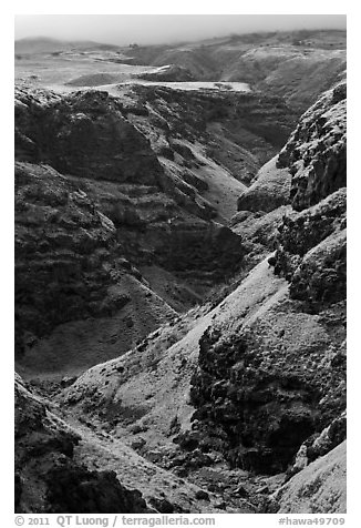 Canyon through volcanic rock. Maui, Hawaii, USA (black and white)