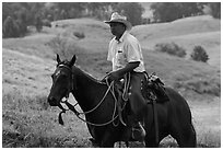 Paniolo (Hawaiian cowboy). Maui, Hawaii, USA (black and white)