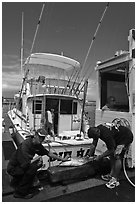 Men cutting fish caught in sport-fishing expedition. Lahaina, Maui, Hawaii, USA ( black and white)