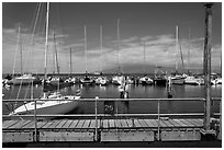 Marina and Lanai Isand. Lahaina, Maui, Hawaii, USA ( black and white)