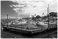 Lahaina harbor. Lahaina, Maui, Hawaii, USA ( black and white)