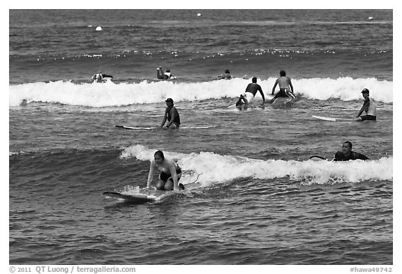 Group of surfers. Lahaina, Maui, Hawaii, USA (black and white)