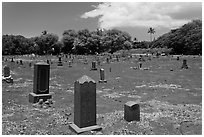 Japanese cemetery. Lahaina, Maui, Hawaii, USA ( black and white)
