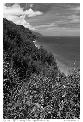 Scalloped Na Pali cliffs along coast. Kauai island, Hawaii, USA (black and white)