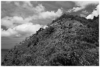 Tropical hill and clouds, Na Pali coast. Kauai island, Hawaii, USA (black and white)