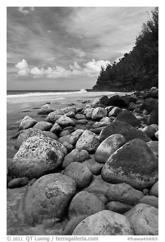 Hanakapiai Beach and rocks. Kauai island, Hawaii, USA (black and white)