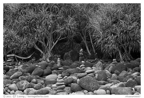 Cairns, Pandanus trees, and hammock, Hanakapiai Beach. Kauai island, Hawaii, USA (black and white)