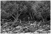 Cairns, Pandanus trees, and hammock, Hanakapiai Beach. Kauai island, Hawaii, USA ( black and white)